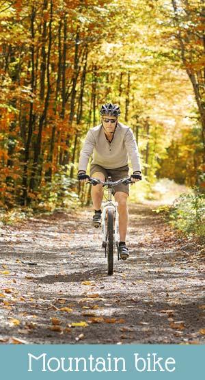 Lake Levico things to do: bike